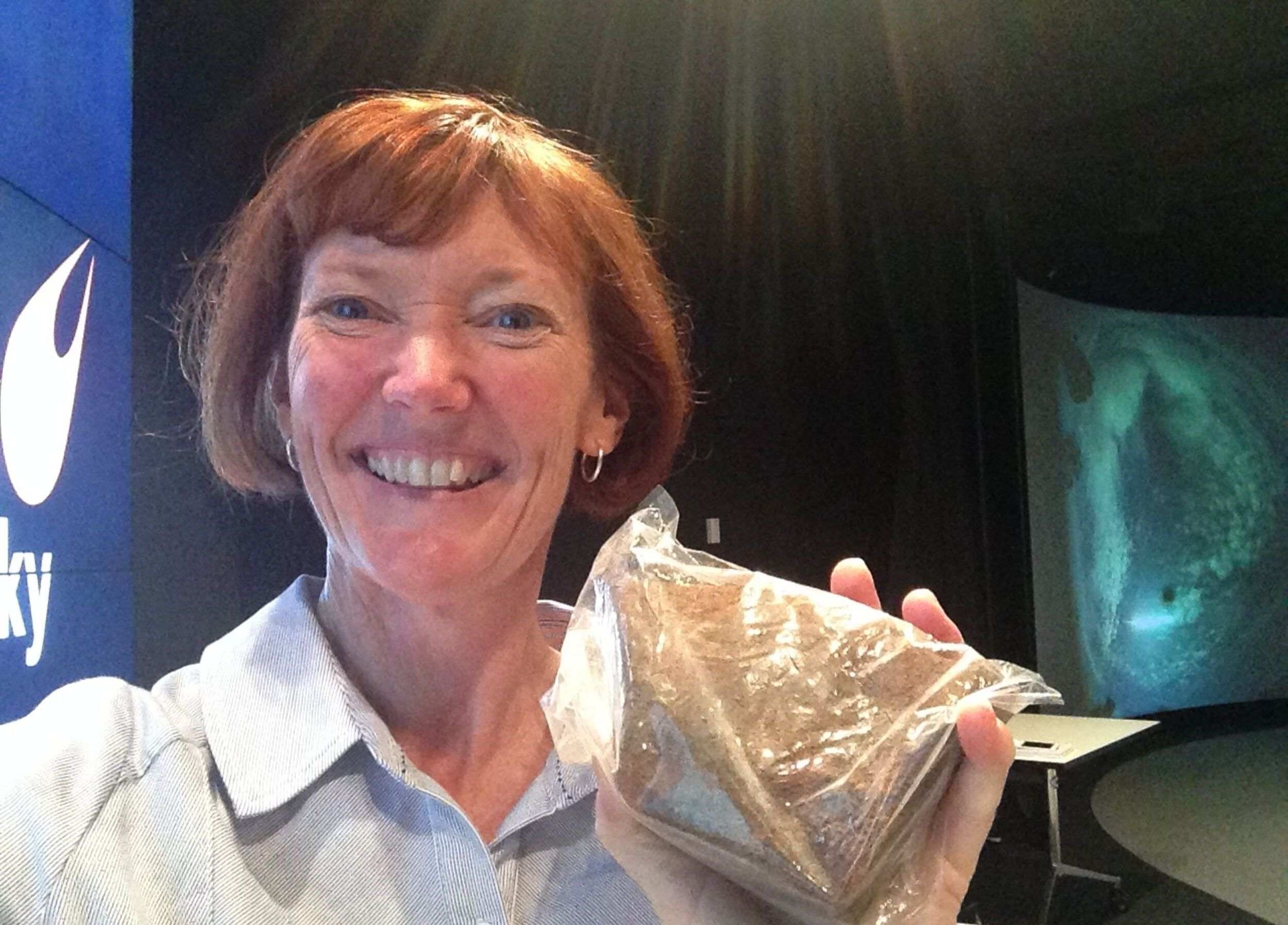 Read more about the article The Day I Met My Meteorite